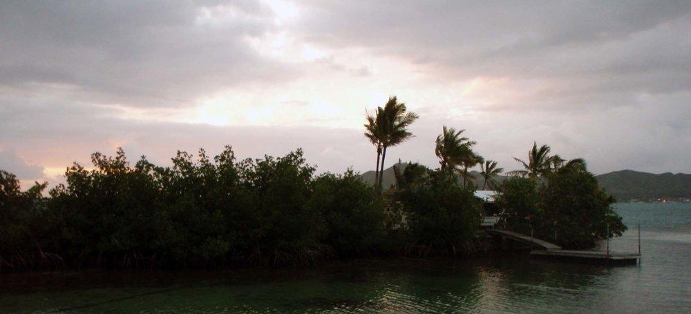 Dawn at Coconut.jpg