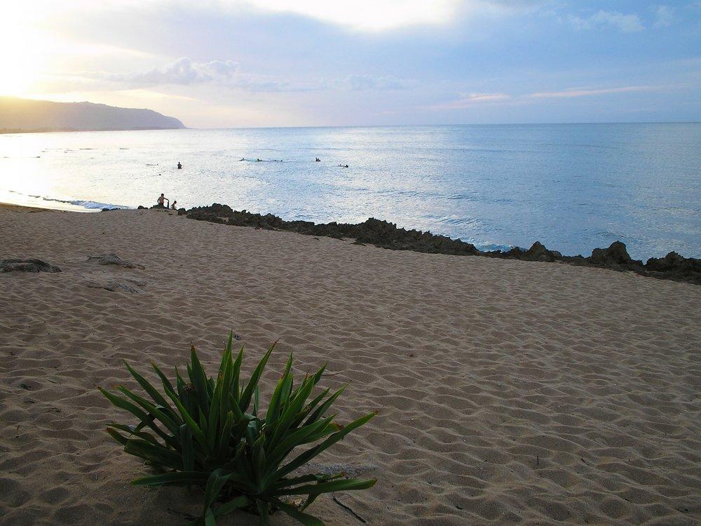 haleiwa alii beach park 2.JPG