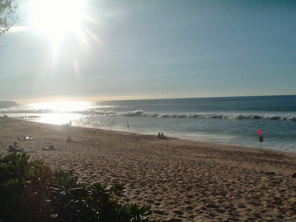 sunny ass  north shore.jpg