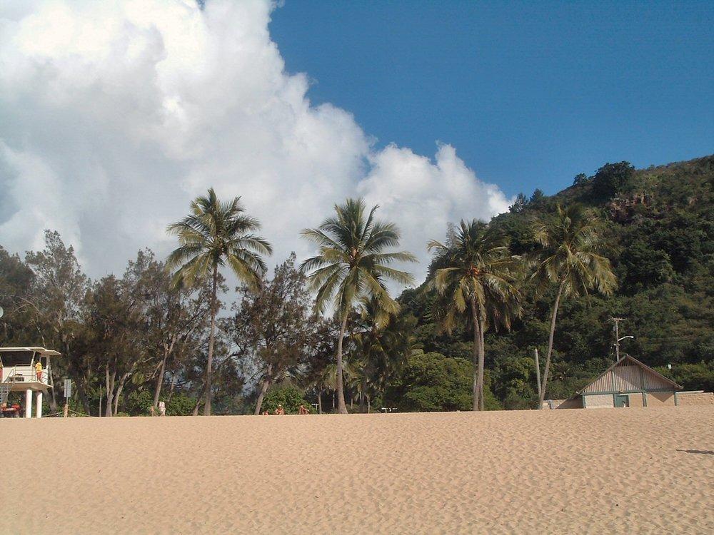 generic beach pic at waimea bay.jpg