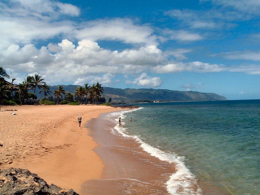 haleiwa alli beach park.jpg