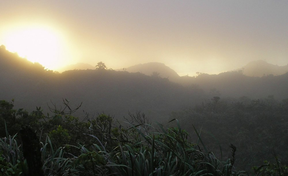 dusk at koolau summit.jpg