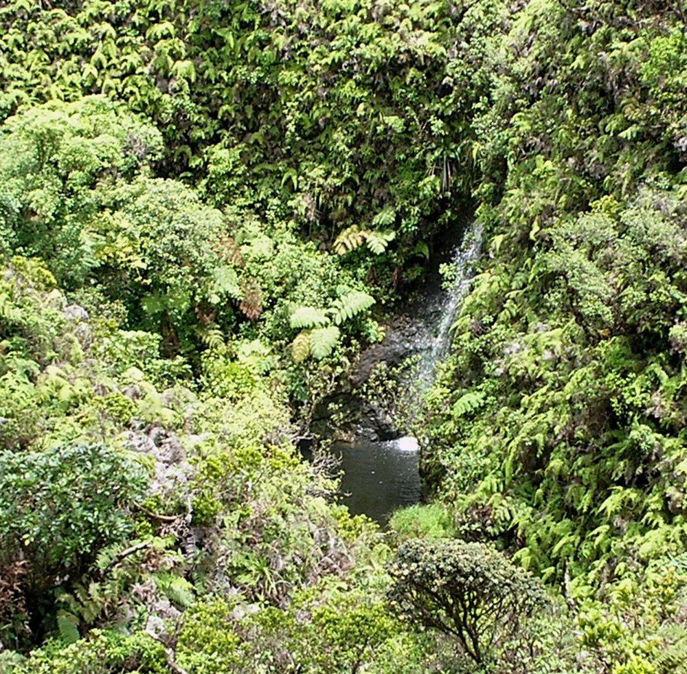 waterfall near cabin.jpg