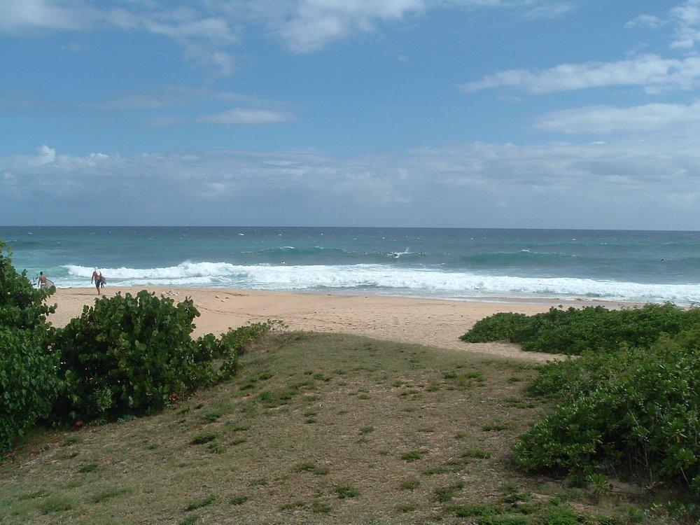 surfers at sandy beach.jpg
