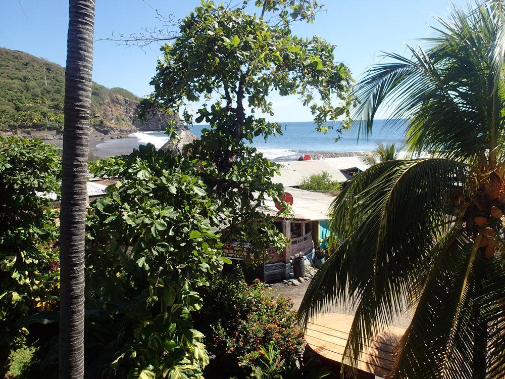 view from Esencia Nativa.jpg