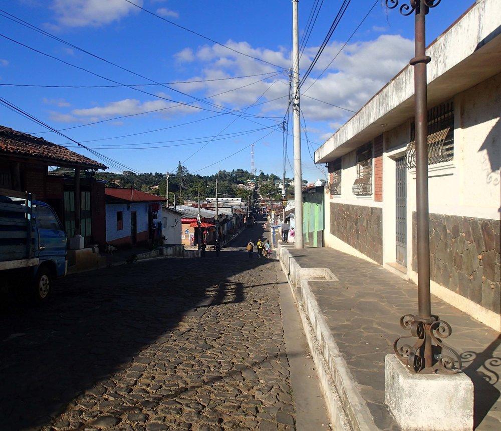 Ruta de la Flores 12-12-14.jpg