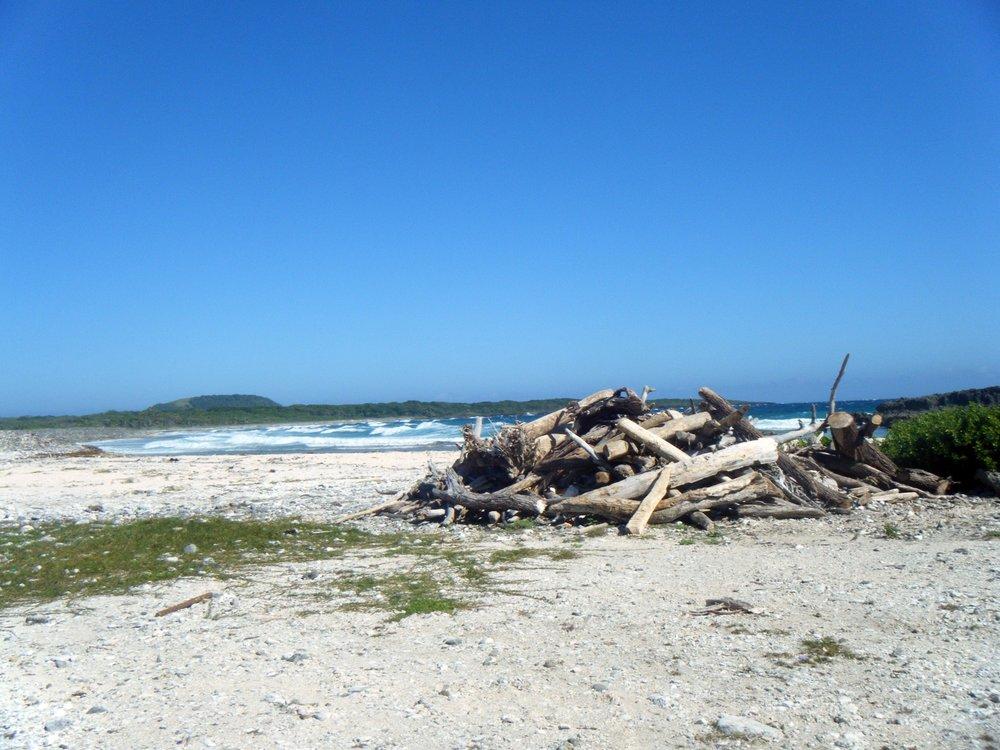 empty coast Utila.jpg