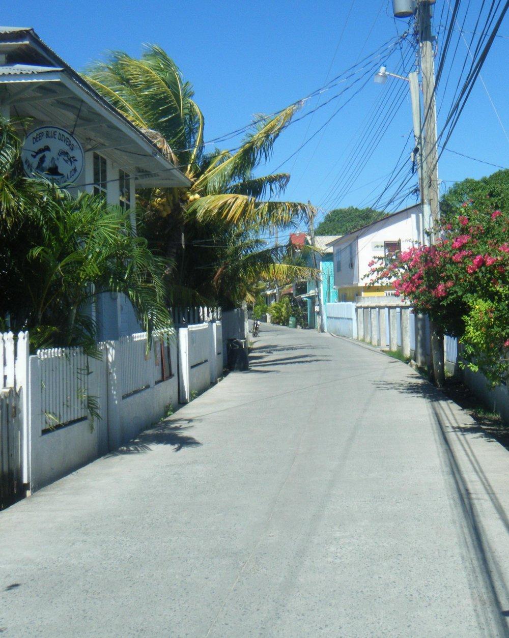 mean streets of Utila.jpg