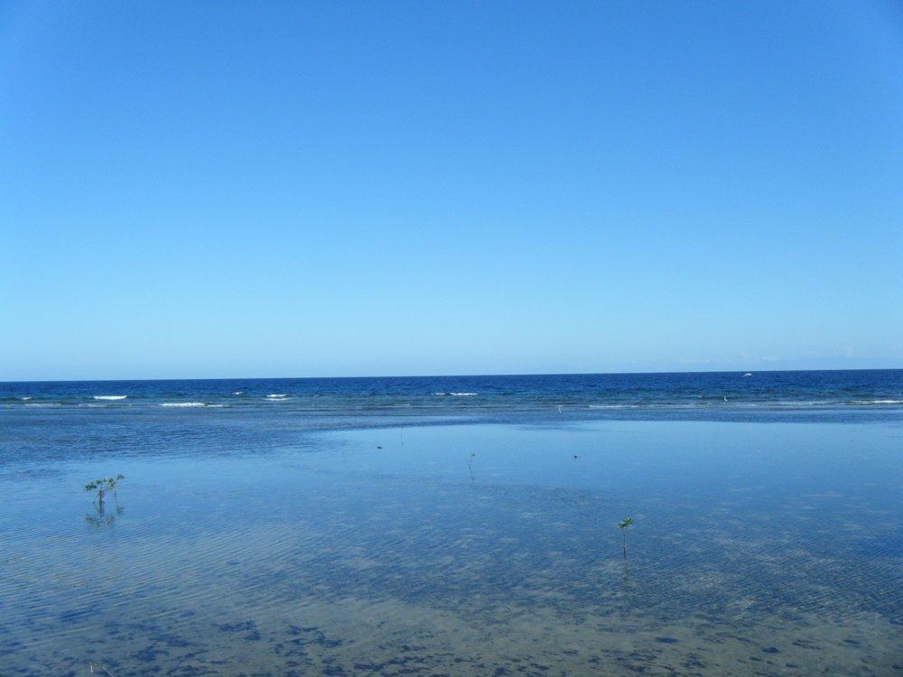 Roatan south shore.jpg