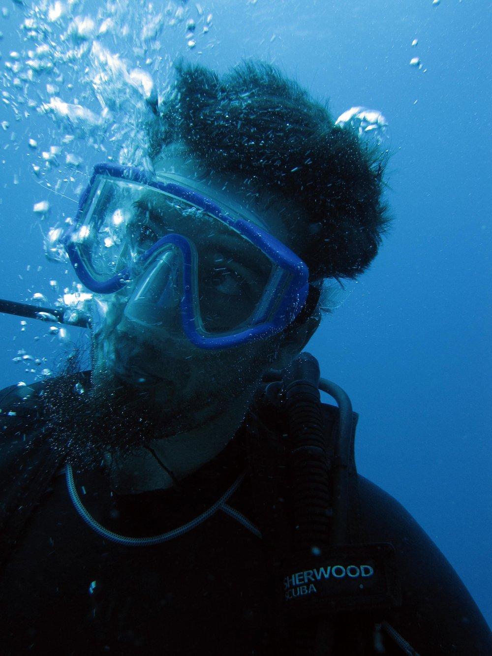 underwater duck.jpg
