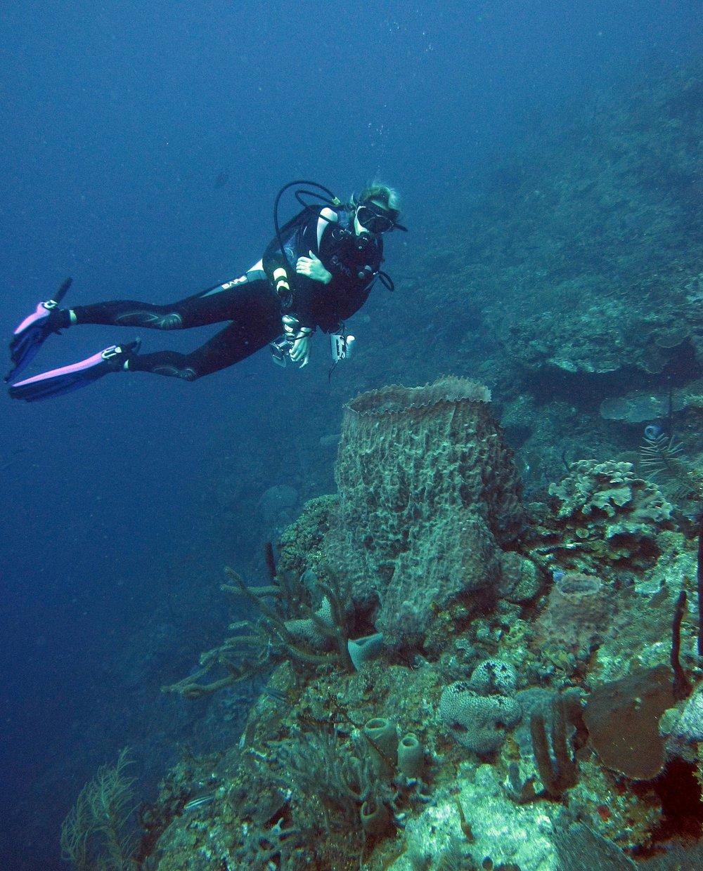 Aussie divermaster Roatan.jpg