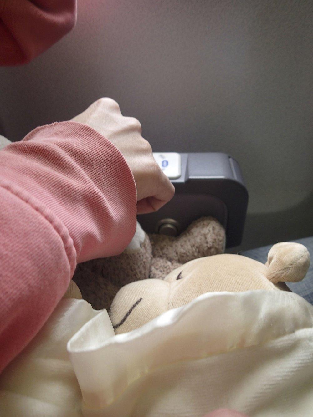 SBJ on the plane.jpg