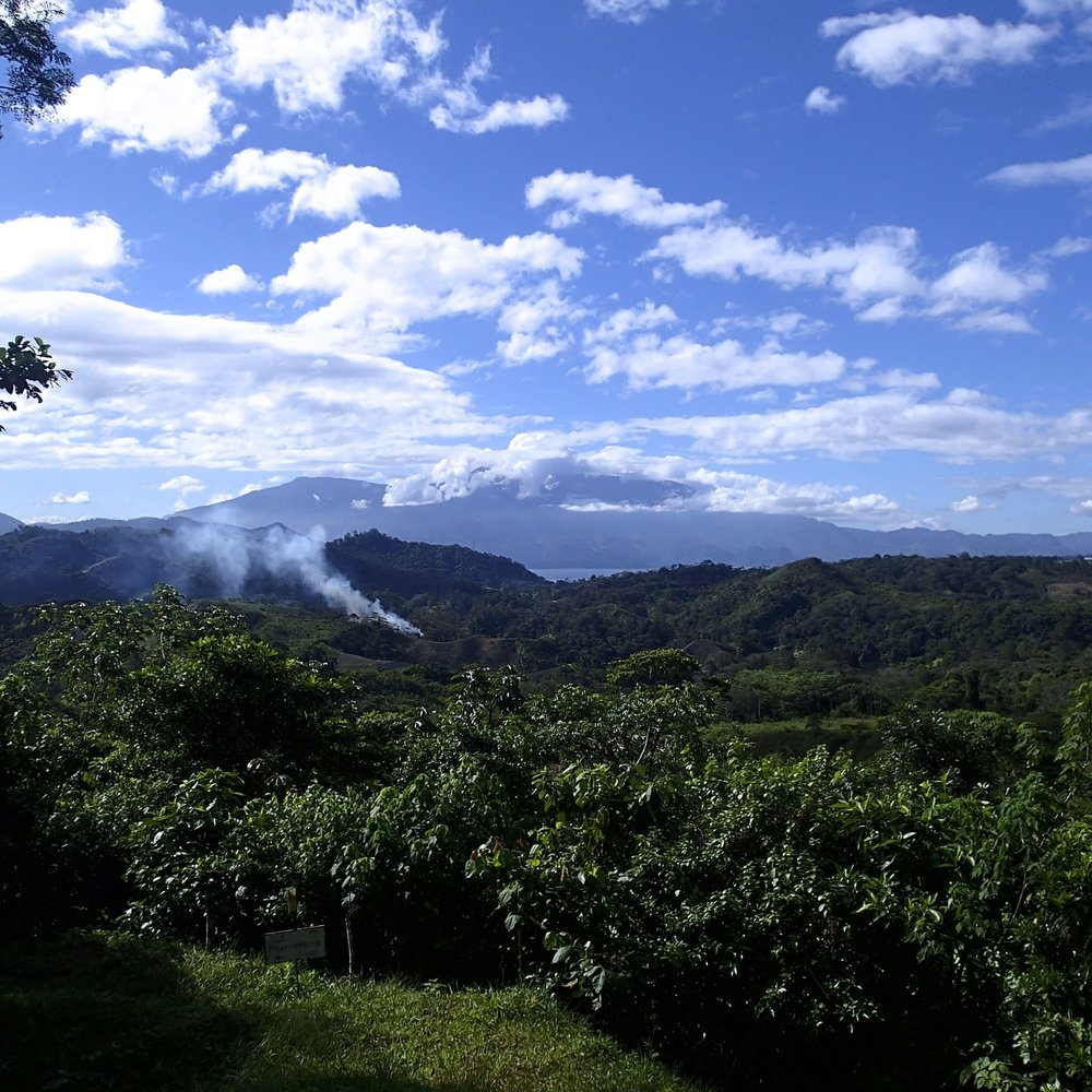 view from visitor's center.jpg