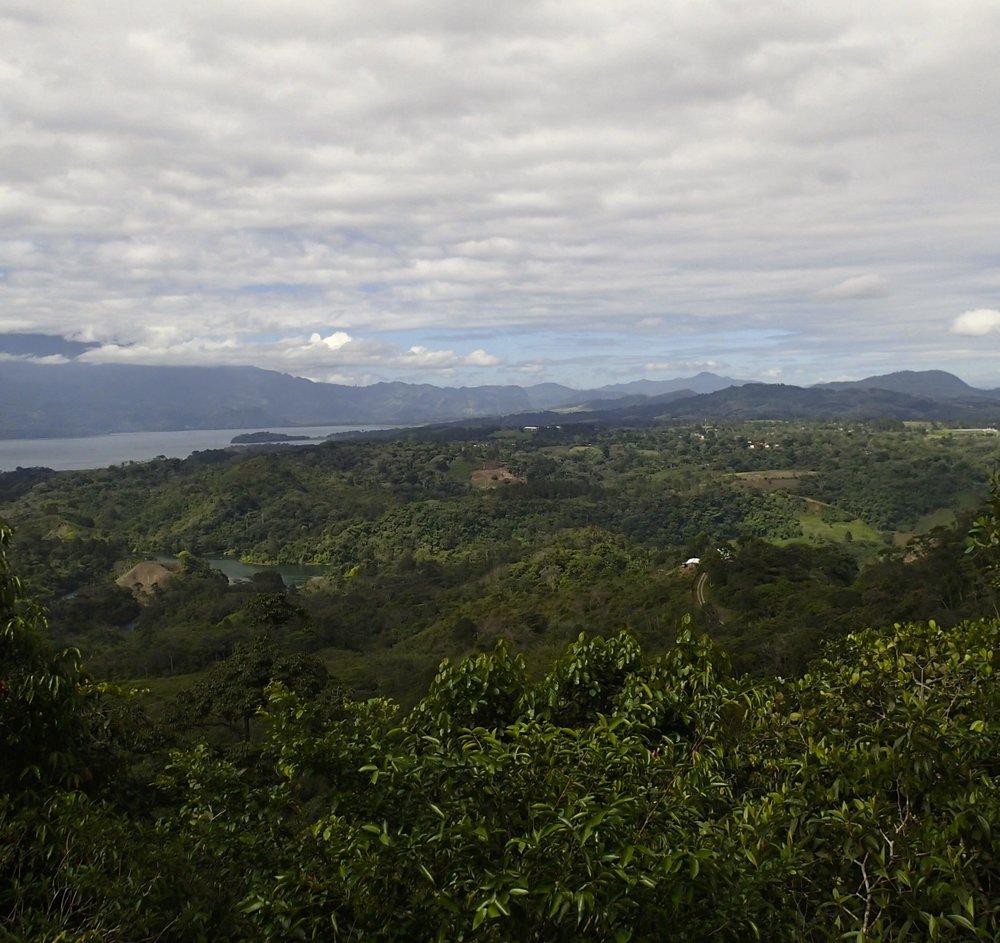 Cerro Azul-Meambar NP.jpg