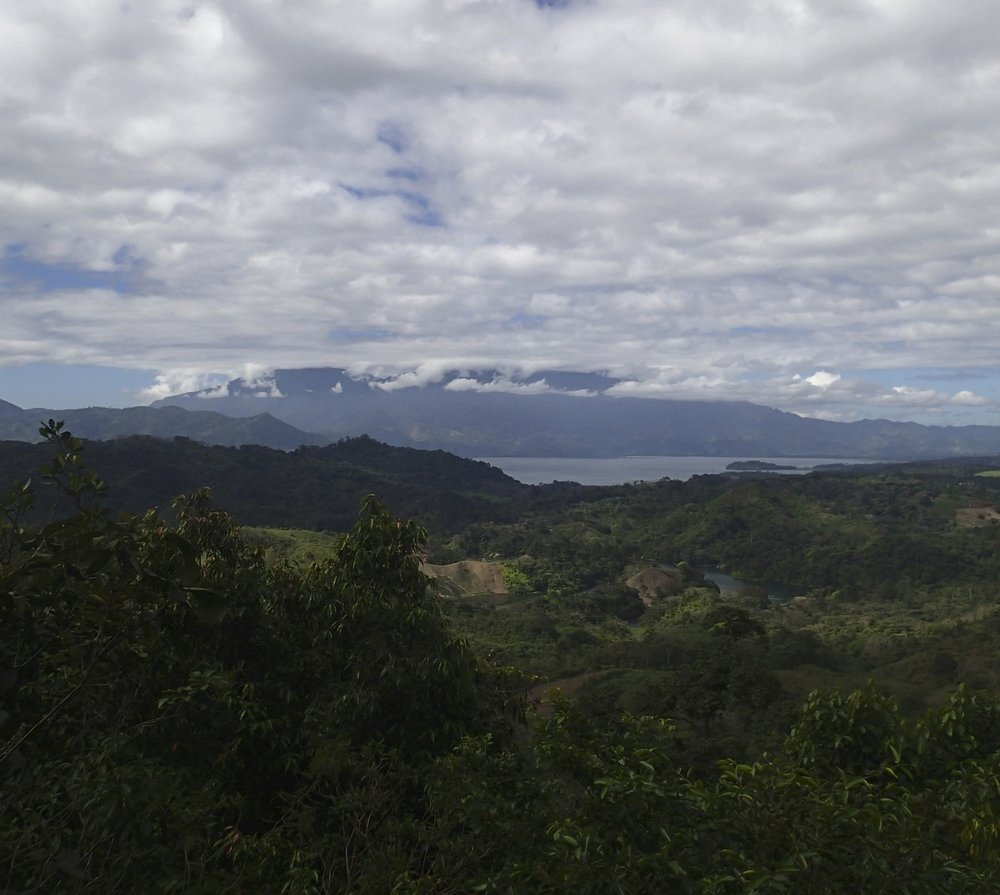view from first lookout.jpg