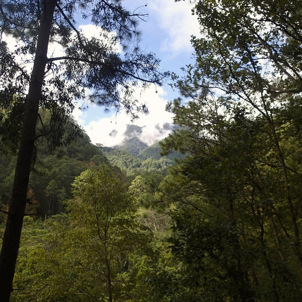 Cerro de Las Minas.jpg