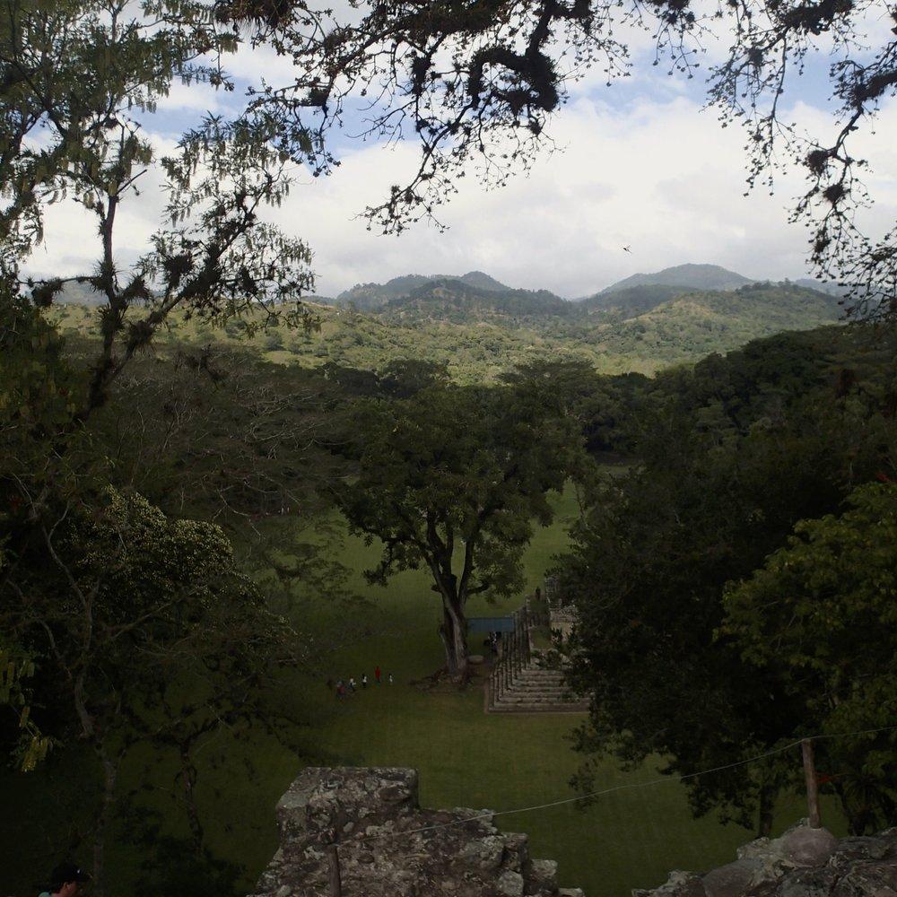 jungle and ruins.jpg
