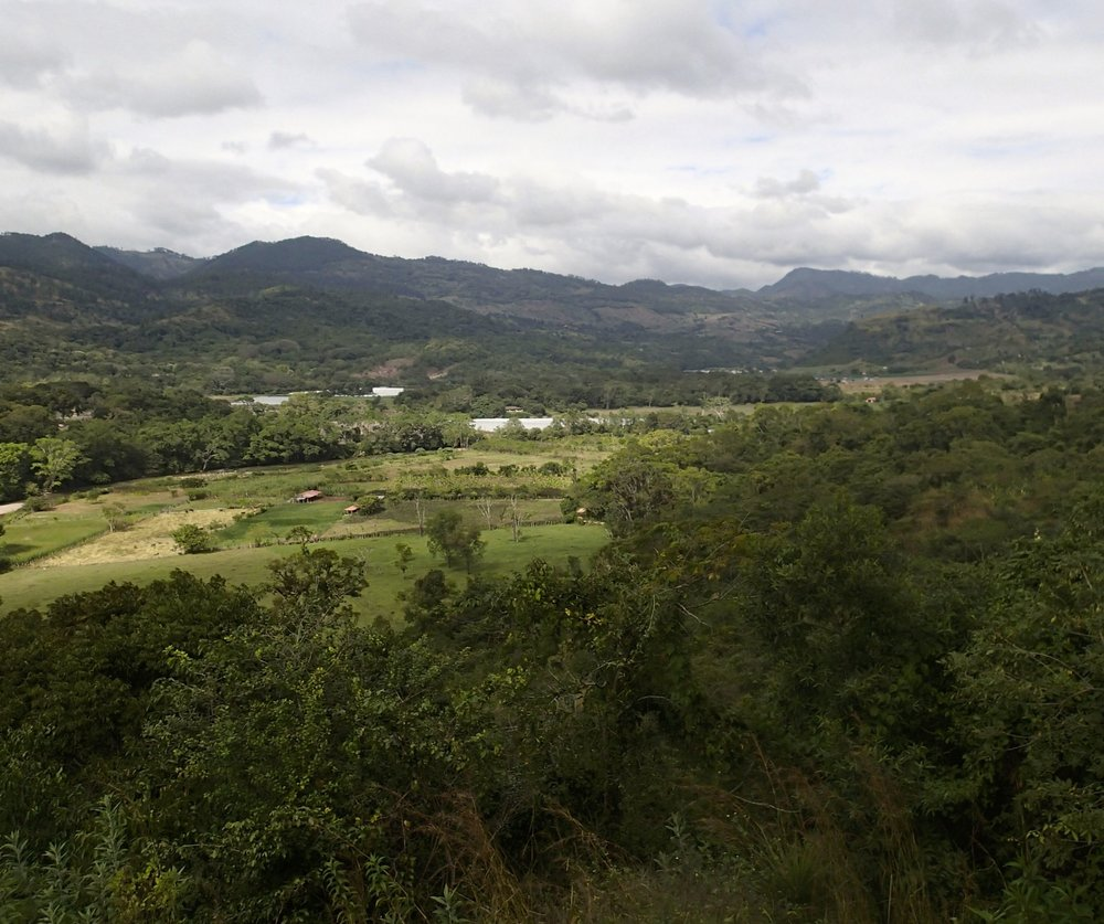 Copan Valley 12-30-13.jpg