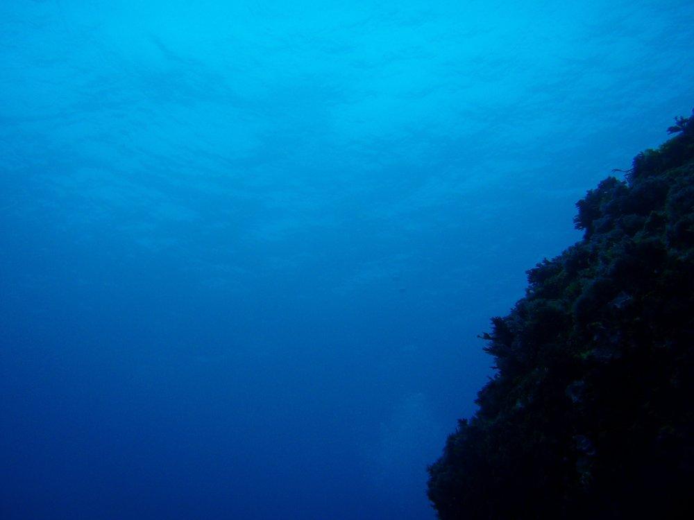 seamount.jpg