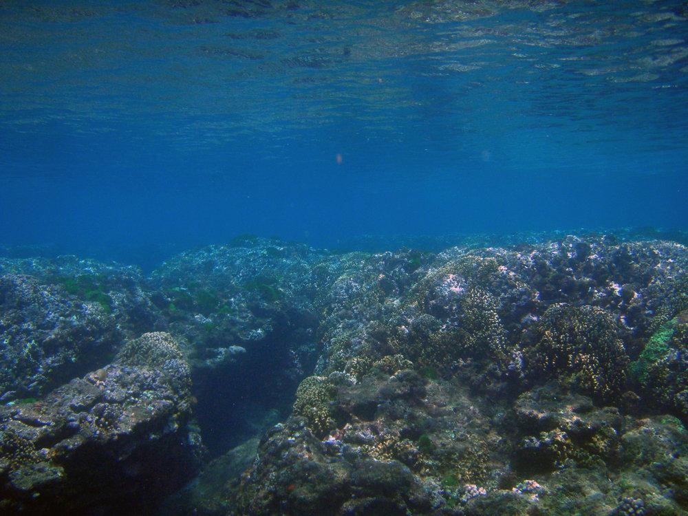 wanitong shallows.jpg