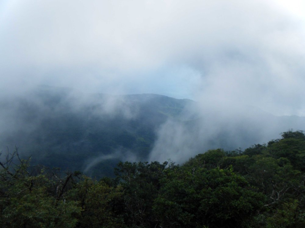 socked in at Lilongshan summit.jpg