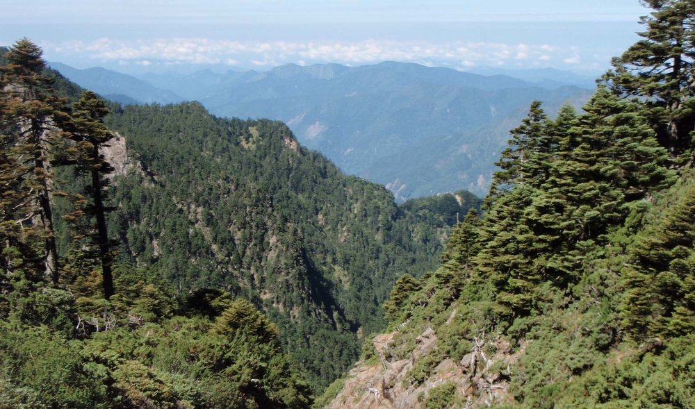 Yushan National Park 6.jpg