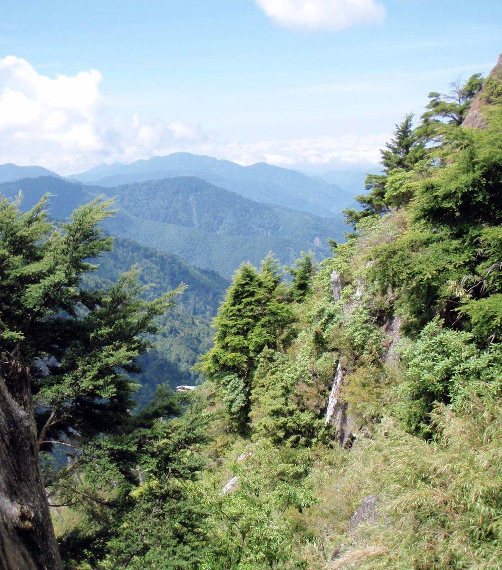 Yushan National Park 13.jpg
