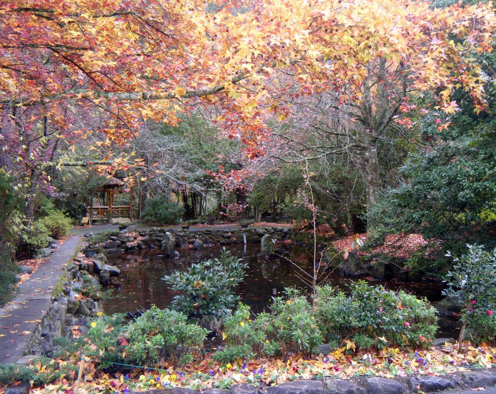 Wuling Recreational Area.jpg