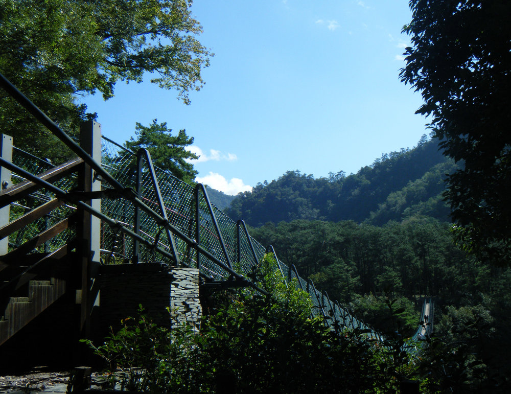 suspension bridge at Aowanda.jpg