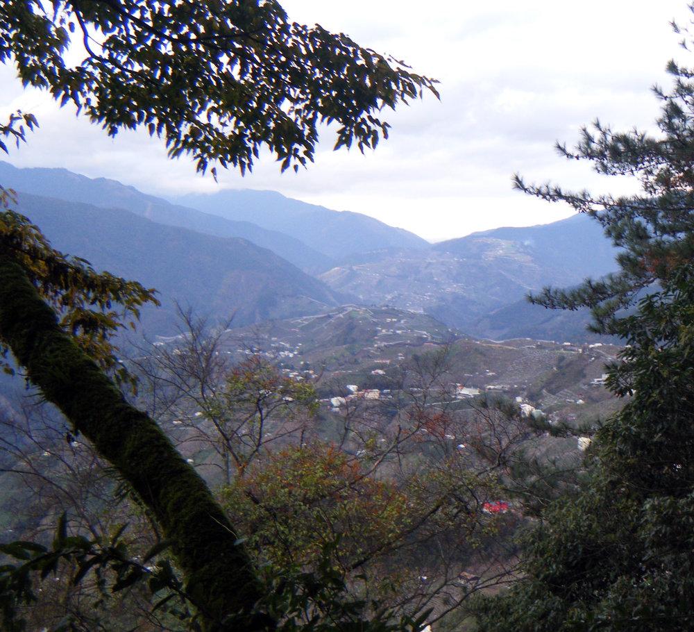 Lishan 12-31-11.jpg