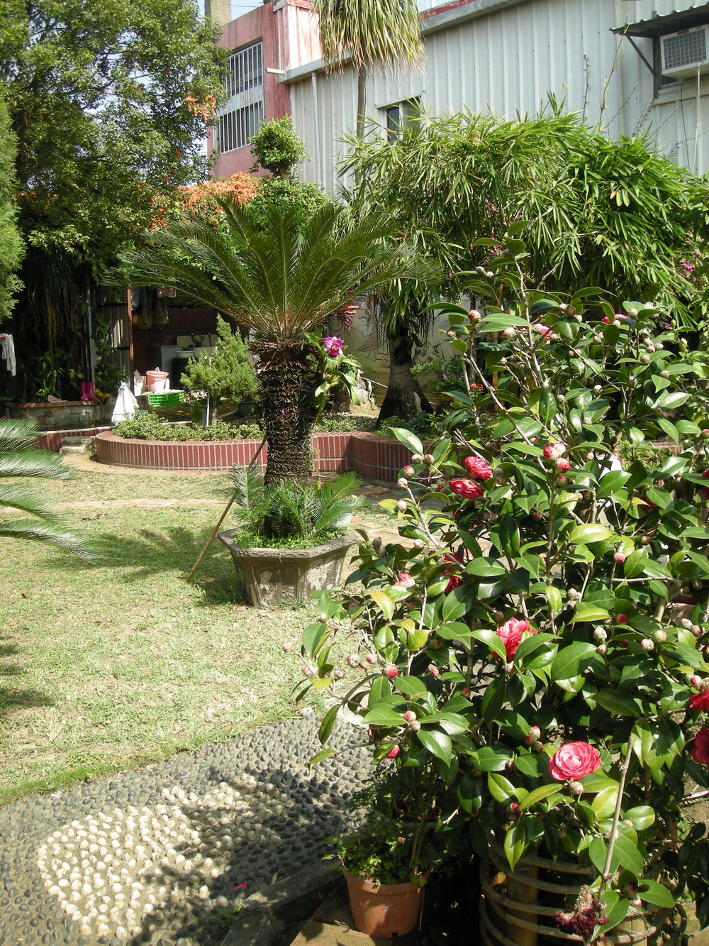 Taoist garden 2.jpg