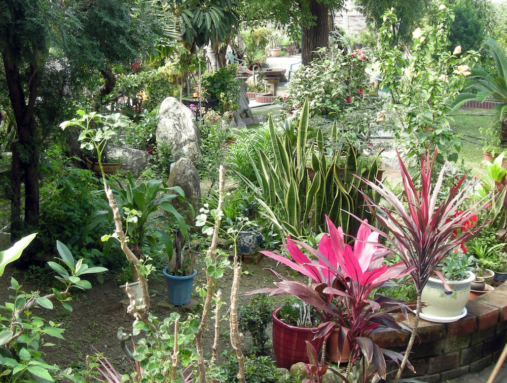 Taoist garden.jpg