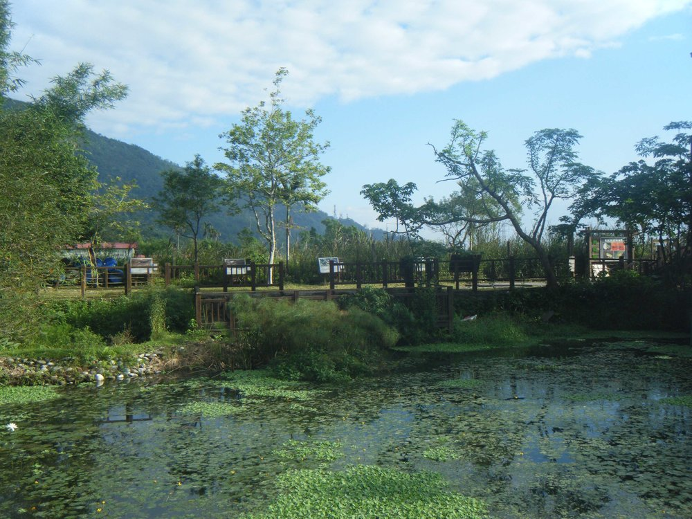 Mataian wetlands 11-27-10.jpg