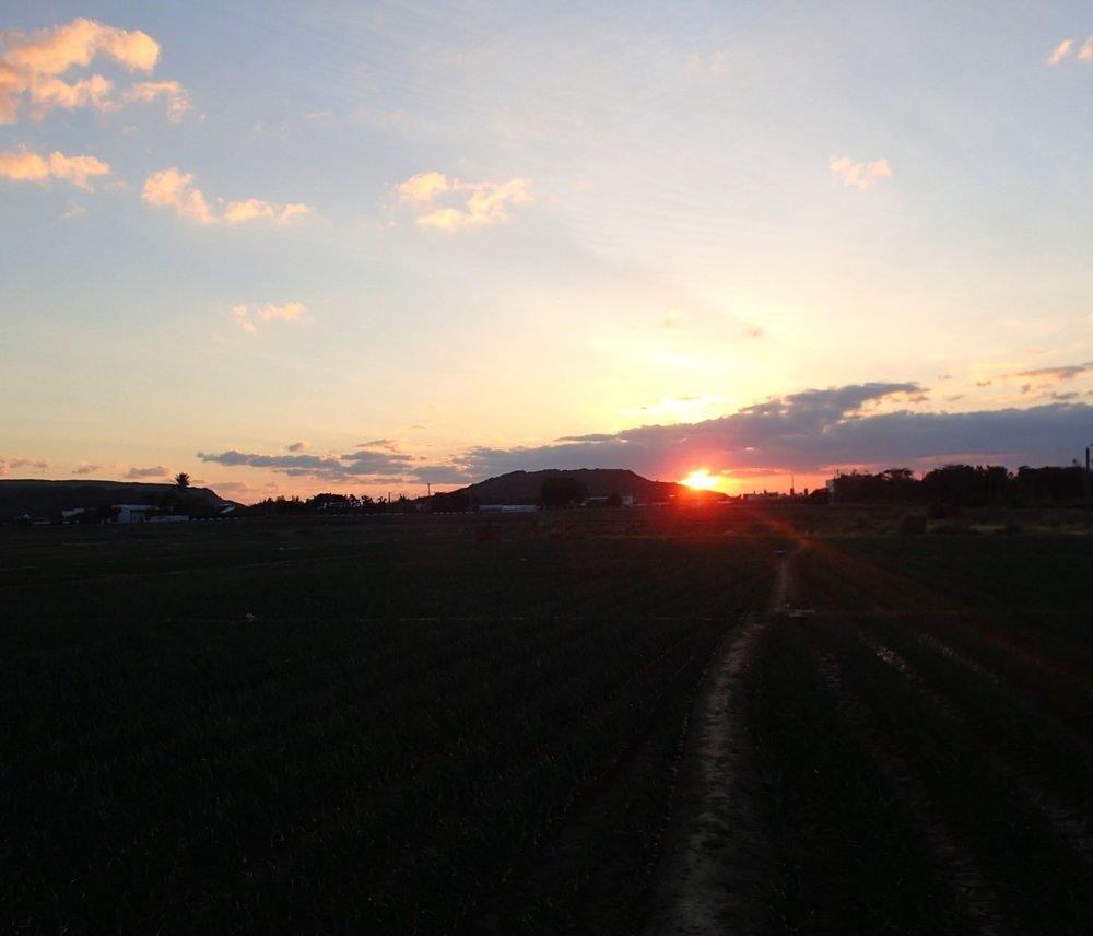 1-23-14 sunset.jpg