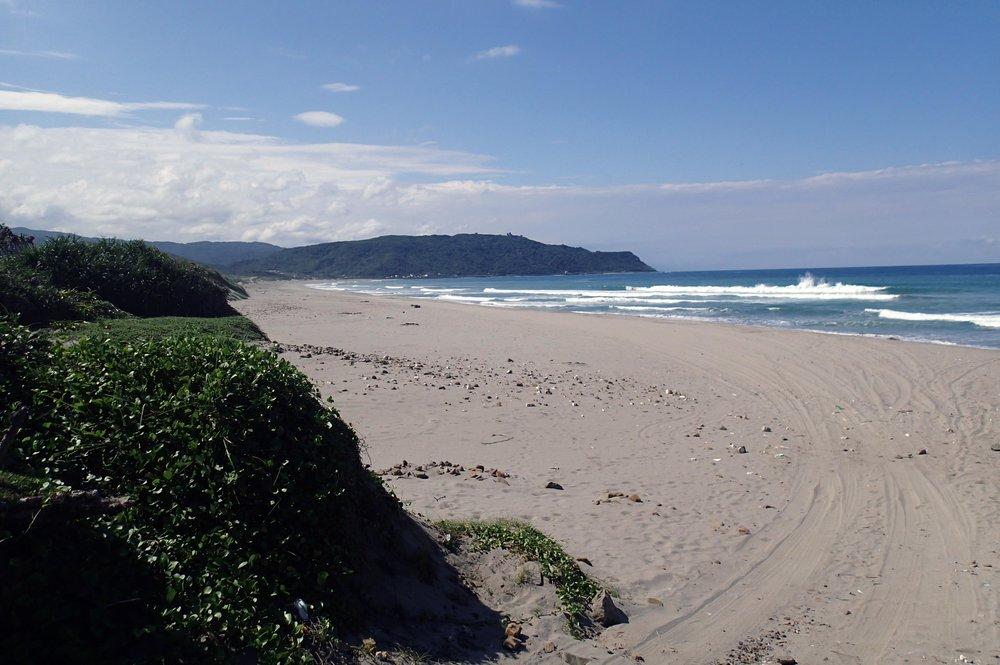 wild windswept beach.jpg