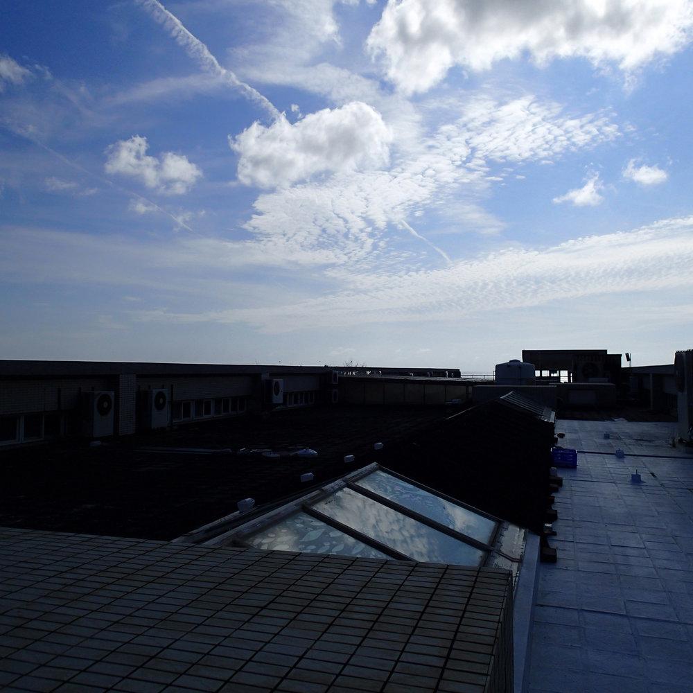 roof of RBI.jpg