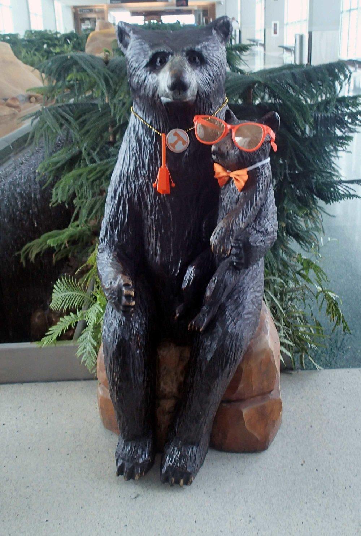 TN bears.jpg