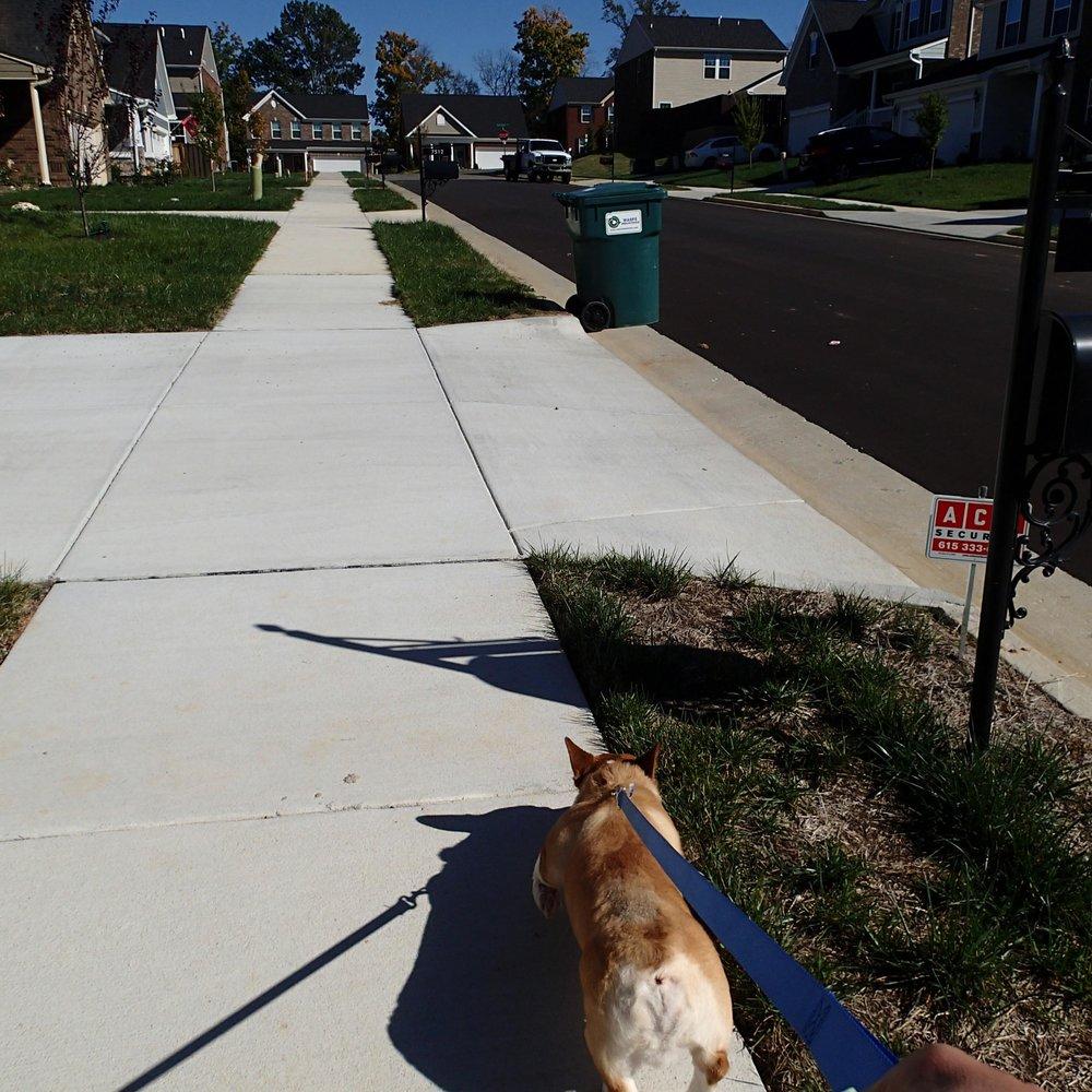 walking Bowser.jpg