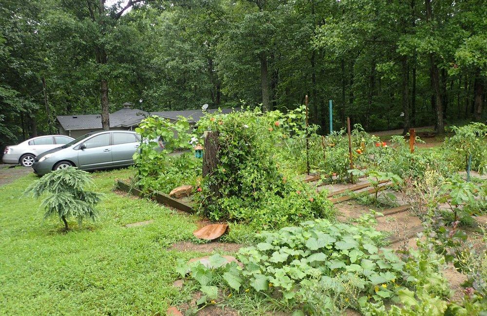 Ritchie's garden.jpg