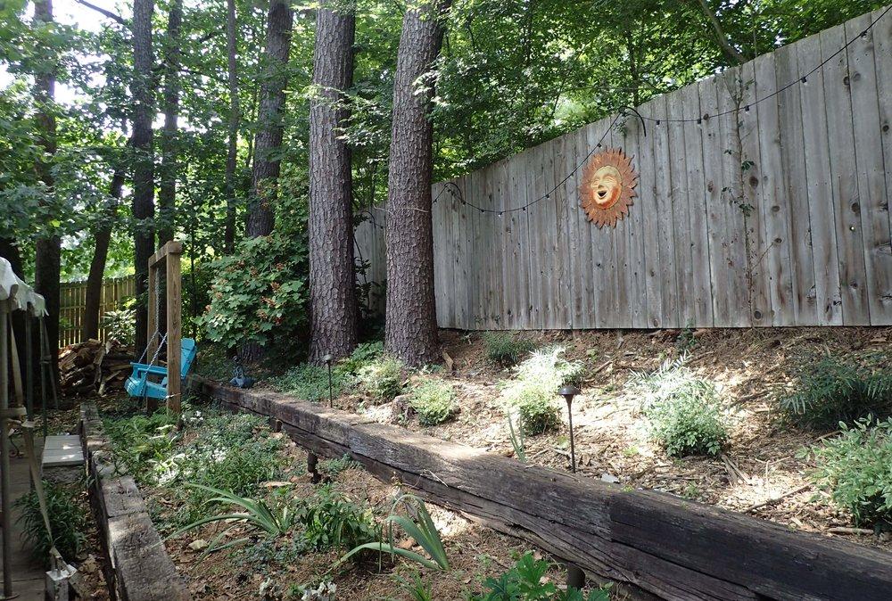 Jason's parent's backyard.jpg