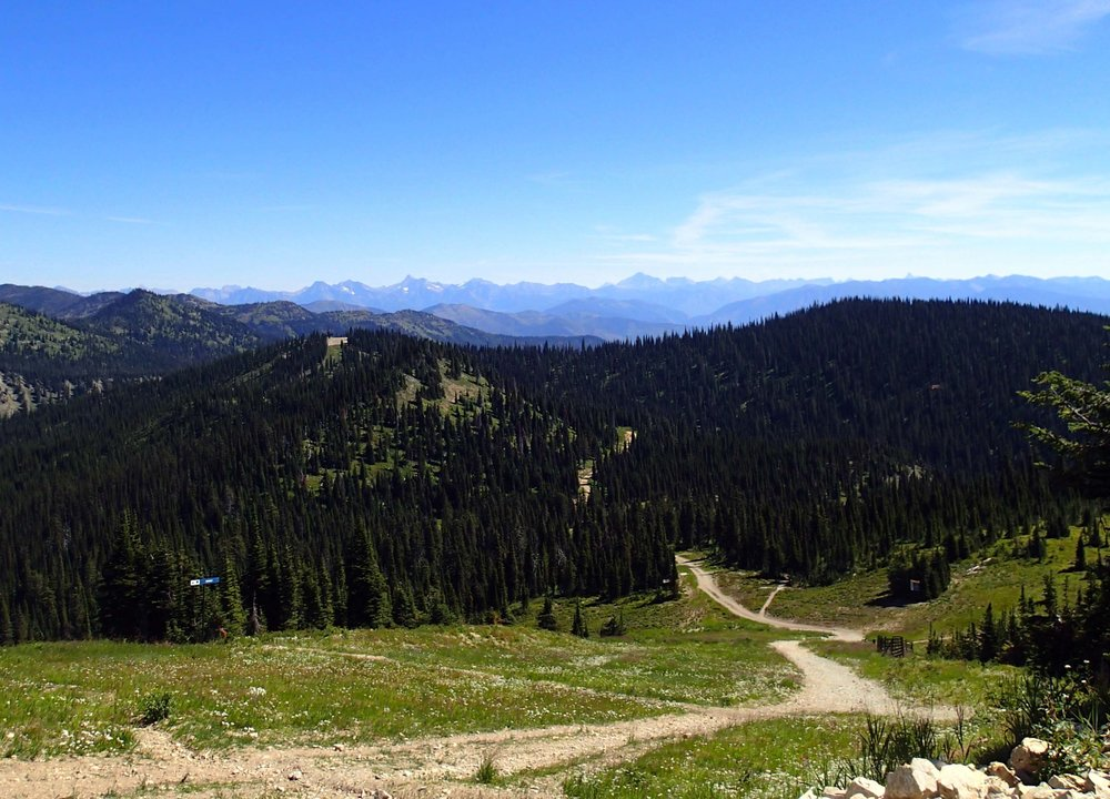 view from Whitefish Mt. summit.jpg