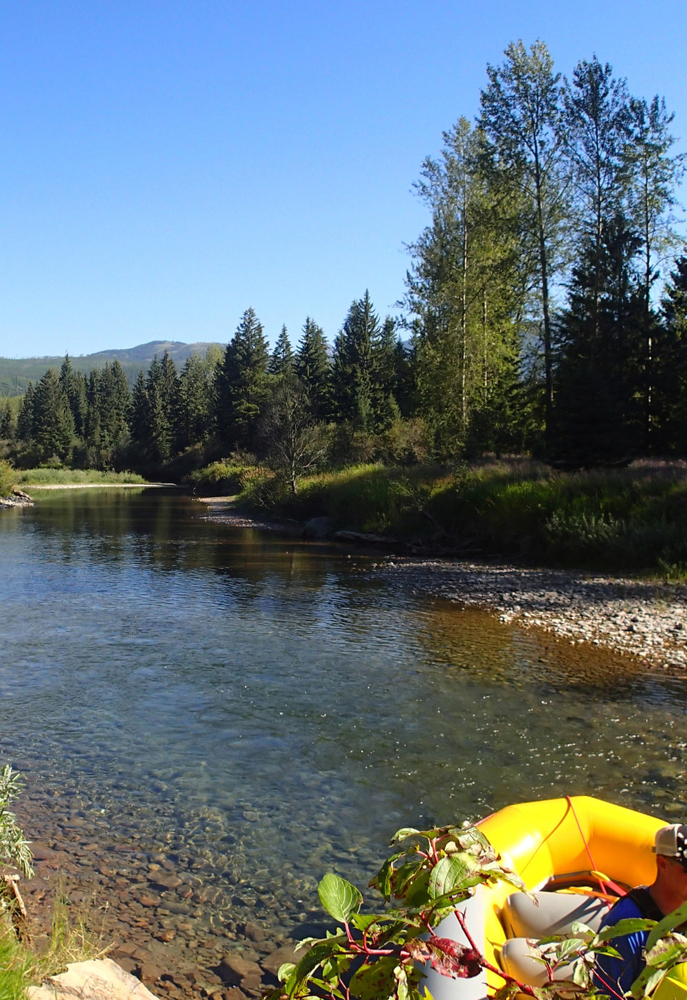 middle fork of the Flathead.jpg