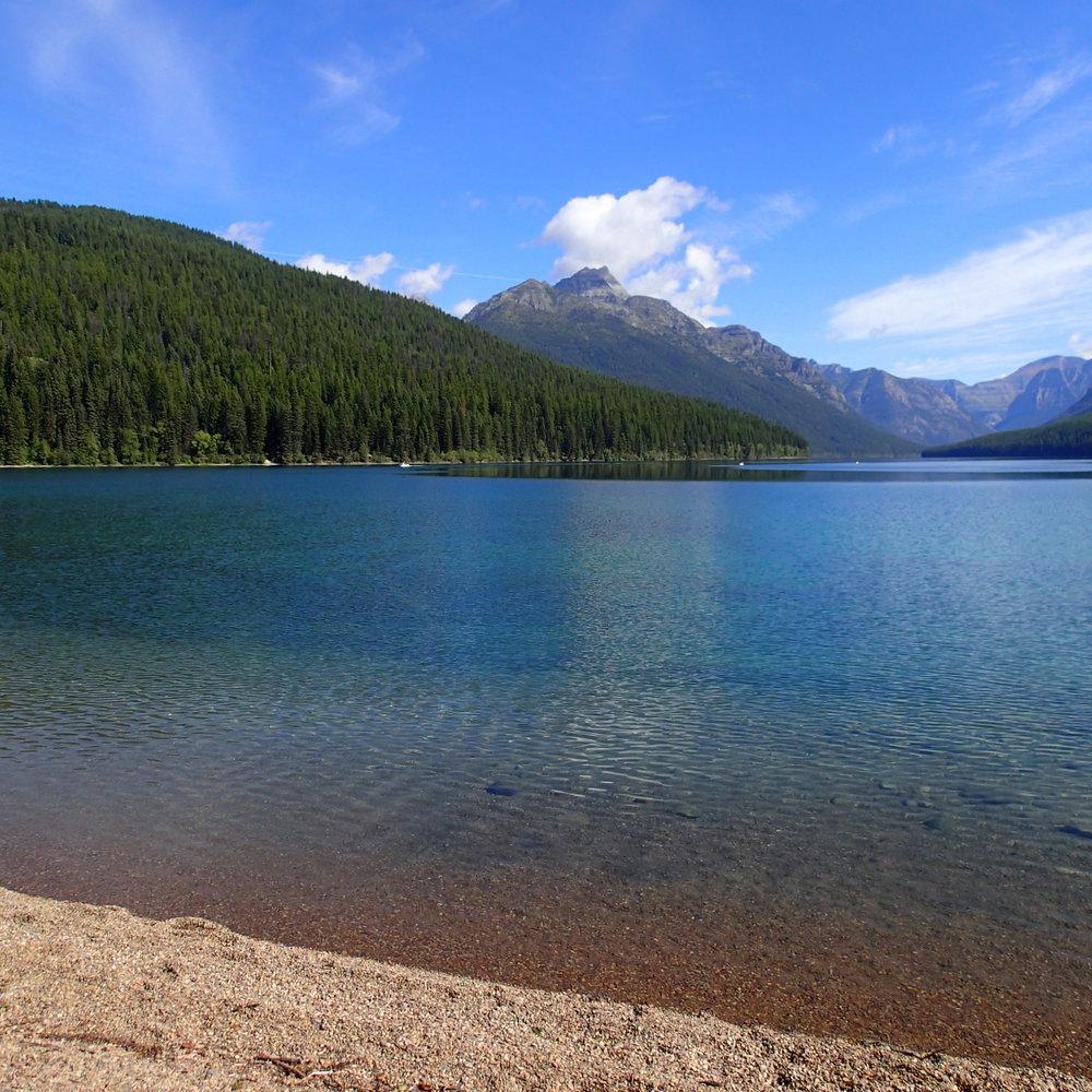 Bowman Lake North Fork.jpg