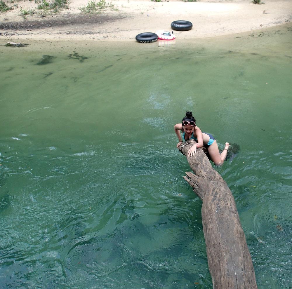 climbing the log.jpg