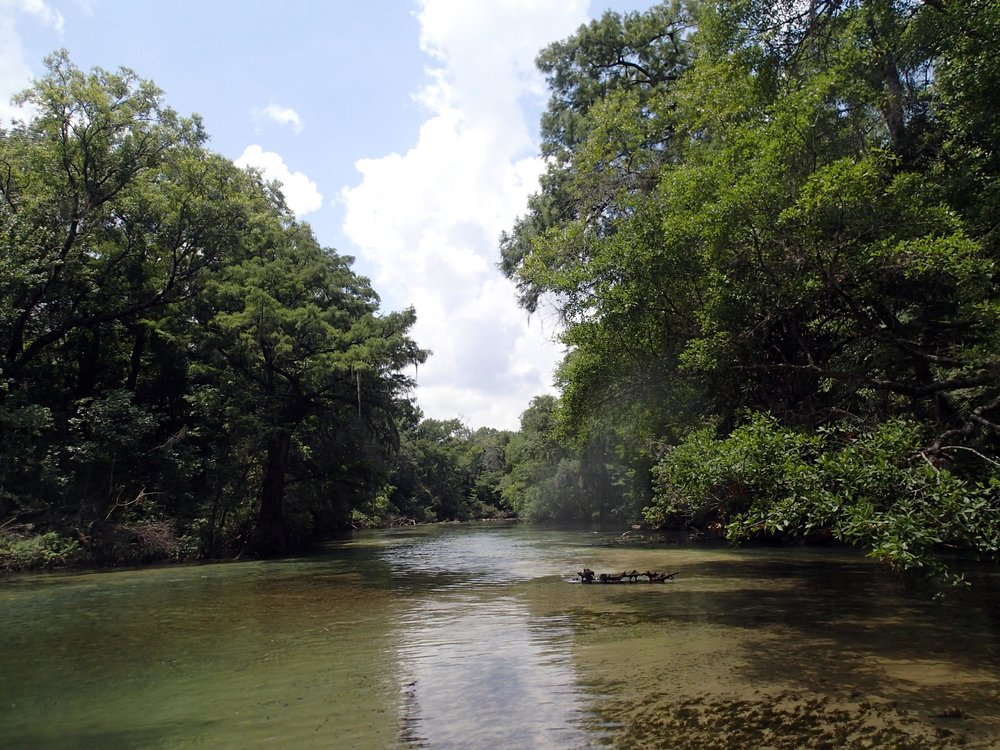 Spring Creek near Marianna, FL.jpg
