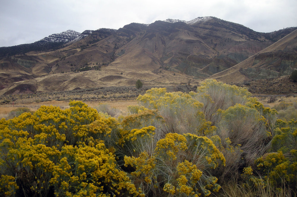 John Day Fossil Beds National Monument.jpg