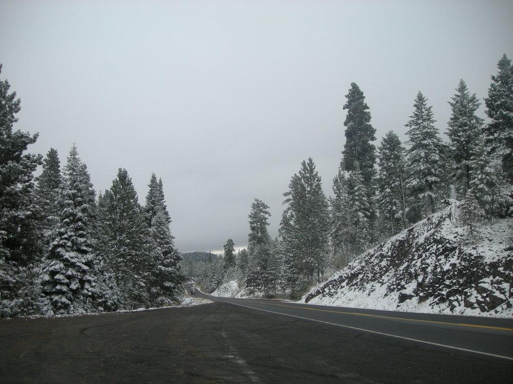 Sherman's first snow day.jpg