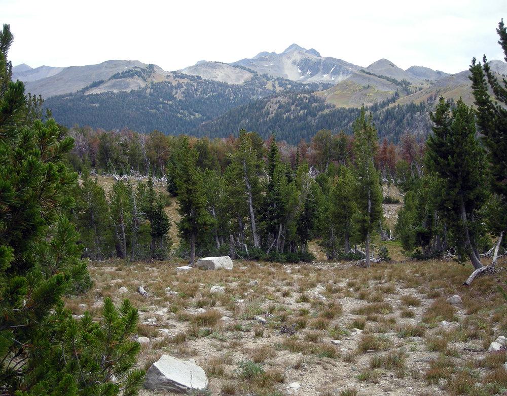 distant summit.jpg
