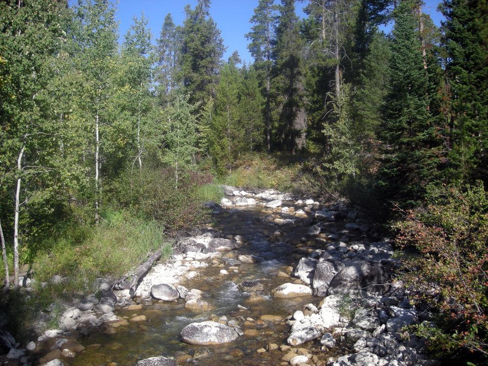 hike to Phelps Lake.jpg