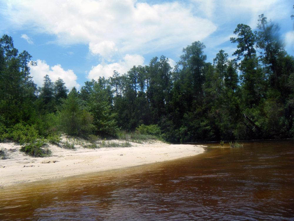 Blackwater River.jpg